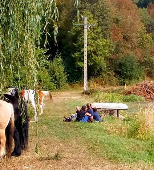 Randonnées équestres à Bourg-en-Bresse