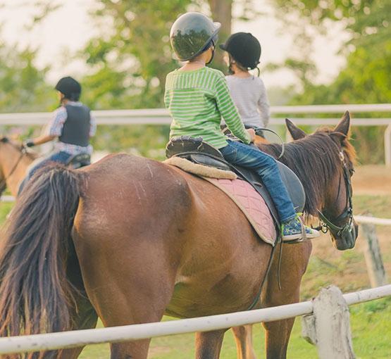 Club d'équitation à Bourg-en-Bresse