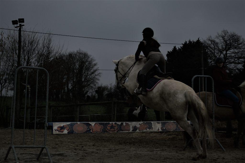 cso equitation